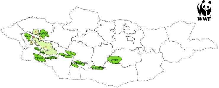 saiga-habitat-and-reintroduction-map